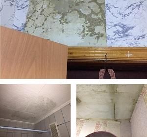 Фотофиксация деффектов в квартире по улице Красноармейская после затопления
